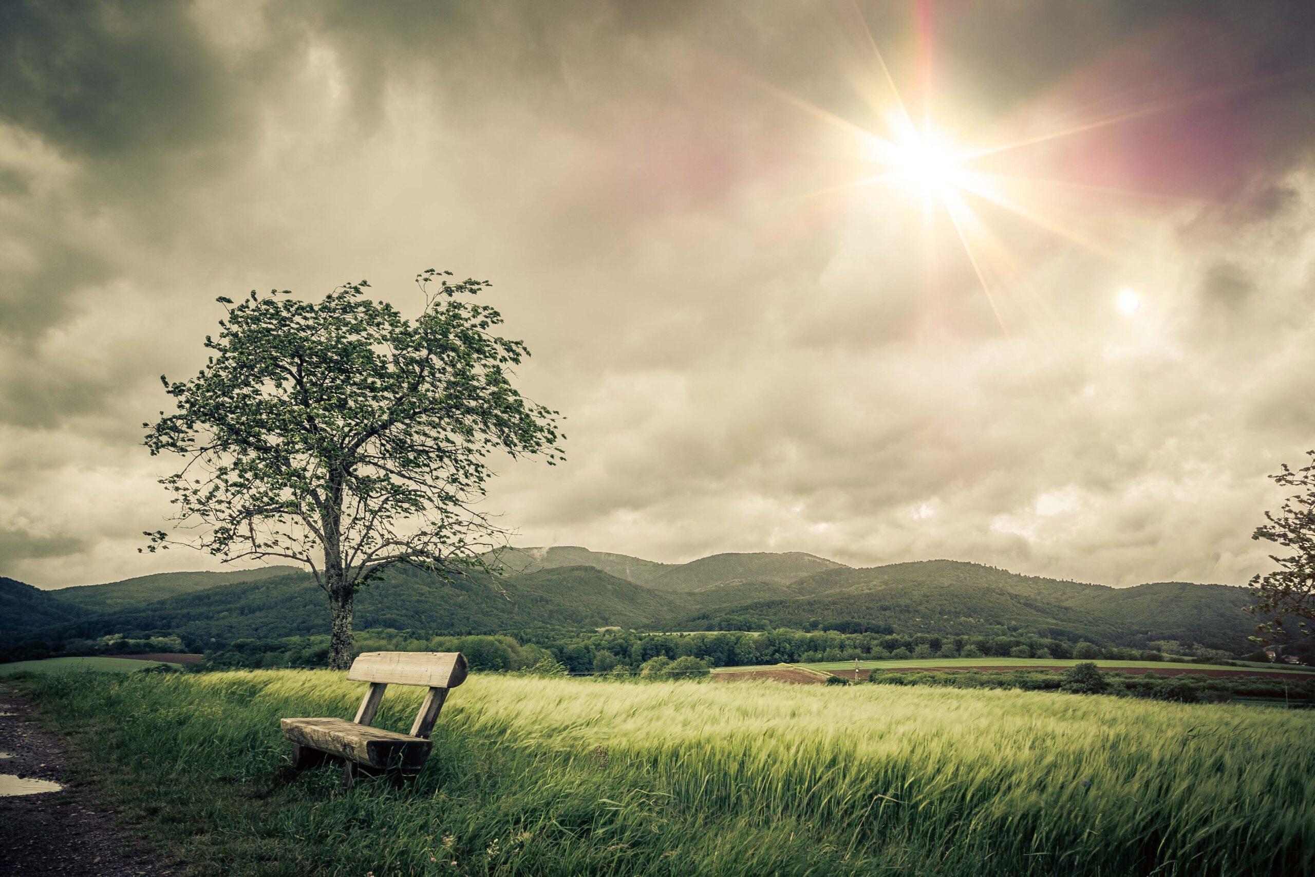 Dank einer Hornhautspende können Menschen noch den Blick in eine schöne Landschaft geniessen