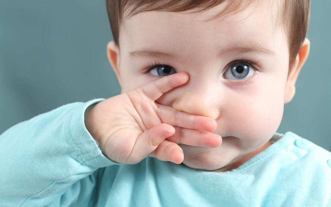 Wie und was Babys sehen