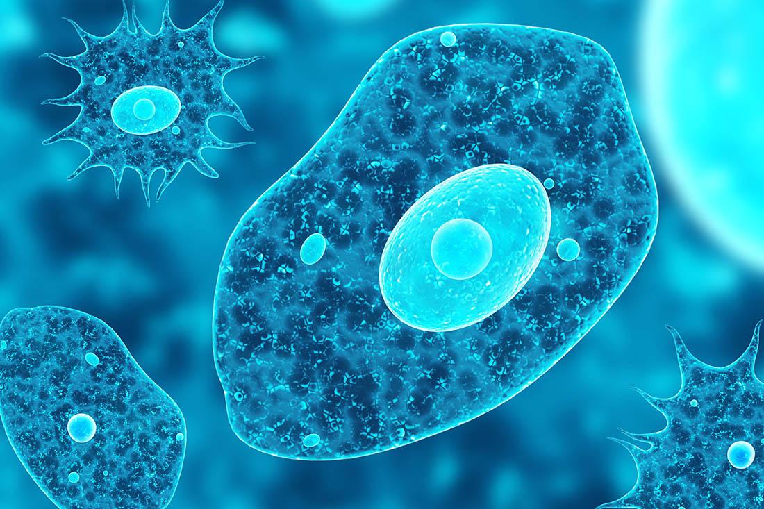 Amoebe im 3D-Rendering auf einem abstrakten blauen Hintergrund.