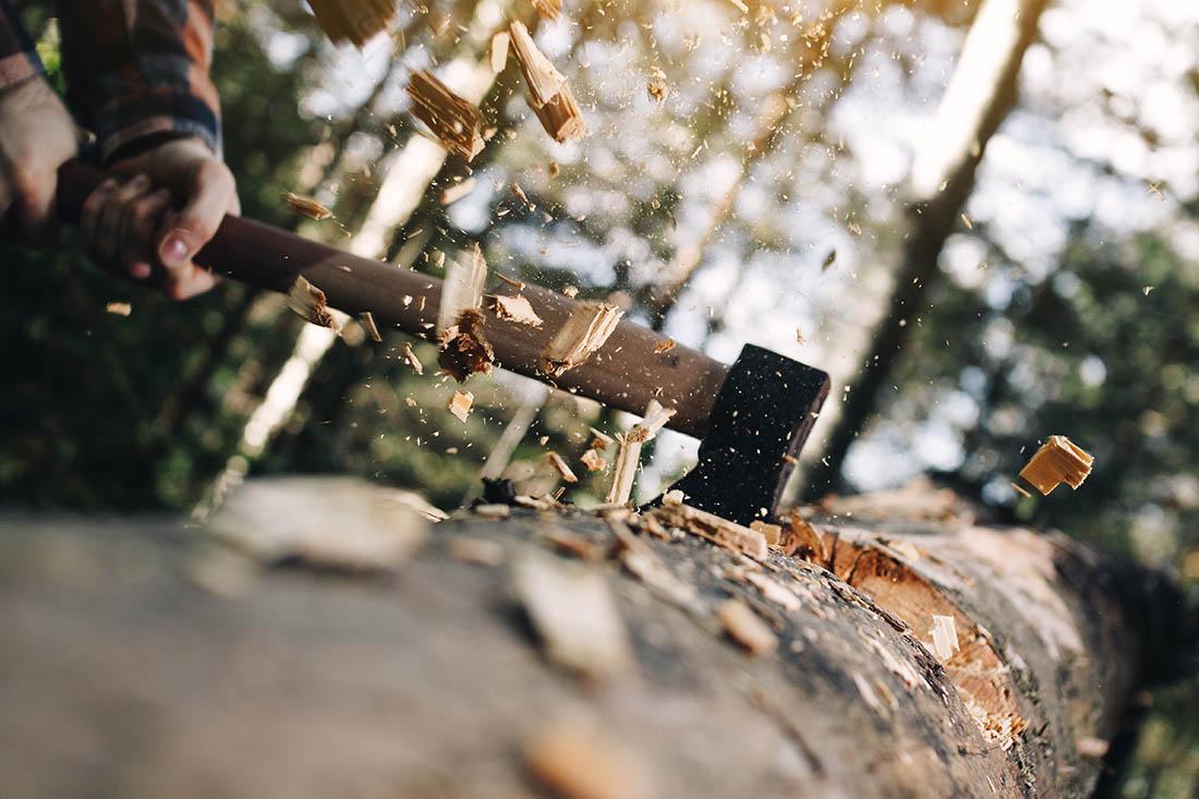 Mann spaltet einen grossen, am Boden liegenden Baumstamm. Die Holzspäne fliegen durch die Lift.