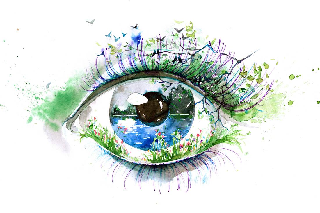 Acquarellzeichnung eines Auges. In der Iris ist eine Seelandschaft mit Ife gemalt. Die Wimpern sind mit Gräsern, Blumen und Vögeln ergänzt.