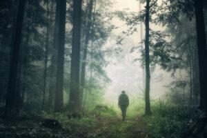 Ein Mann von hinten zu sehen, läuft alleine auf einem Waldpfad. Es ist neblig und es herrscht eine mystische Stimmung. Den Waldpfad säumen hohe Laub- und Nadelbäume.