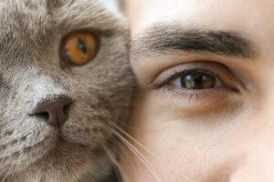 Eine graue Katze mit orangem Auge schmiegt den Kopf an jenen einer jungen Frau mit braunem Auge. Beide werden sehr nah gezeigt, so dass nur jeweils ein Auge zu sehen ist.
